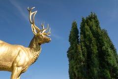 Złota jeleń statuy Drachenburg kasztelu Bonn Niemcy niebieskiego nieba podróż zdjęcie stock