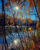 Złota jesień obraz stock