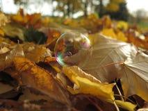 Złota jesień przychodził nasz spokojny miasteczko Zdjęcia Royalty Free