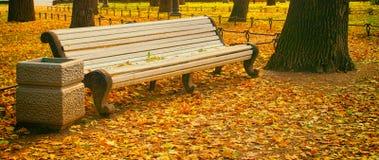 Złota jesień w miasto ogródzie Zdjęcie Stock