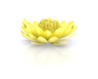Złota lotosowa wodna leluja royalty ilustracja