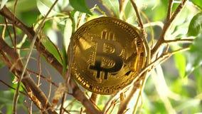 Złota metal moneta Tworząca Jako Decentralizująca Cyfrowej waluta zbiory wideo