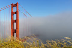 złota mgły bridżowa brama Zdjęcie Stock