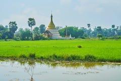 Złota pagoda, sąsiadowanie z polami, Ava obrazy royalty free