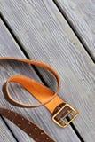 Złota pasowa klamra zdjęcie stock