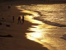 Złota plaża obraz royalty free