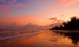 Złota plaża Fotografia Royalty Free