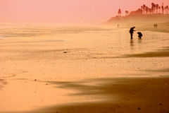 złota plażowa sylwetka obraz stock