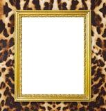 Złota rama z lampart tekstury tłem fotografia royalty free