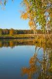Złota Rosyjska jesień Fotografia Royalty Free