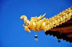 Złota smok głowa z niebieskim niebem Zdjęcie Stock