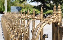 Złota smoka wzoru poręczówka Fotografia Royalty Free