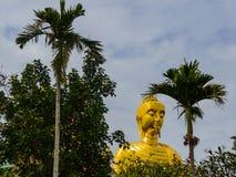 Złota statua Buddha wśród drzewek palmowych na nieba tle obraz stock