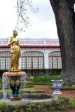 Złota statua w ogródzie Monplaisir pałac Obraz Royalty Free