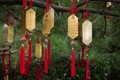Złota Taoistyczna modlitwa czaruje obwieszenie od drzewa zdjęcia royalty free