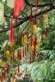 Złota Taoistyczna modlitwa czaruje obwieszenie od drzewa zdjęcia stock
