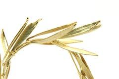złota w wianek obrazy royalty free