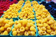 Złote żółte malinki zdjęcie royalty free