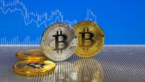 Złote bitcoin monety odizolowywać na białym tle zbiory