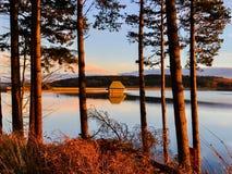 Złote godziny przy Kielder wodą, Northumberland park, Anglia Fotografia Stock