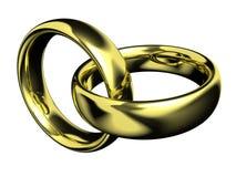 złote pierścienie Obrazy Stock