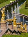 Złote statuy i fontanny w Peterhof pałac Fotografia Stock