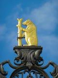 Złoto Niedźwiadkowy symbol Obraz Stock