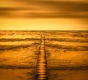 Złoto plaża obraz stock