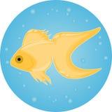 Złoto ryba w wodzie z bąblami ilustracji