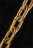 złoty łańcuszkowy Obraz Stock