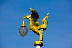 Złoty łabędź Obraz Royalty Free