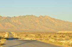 Złoty światło iluminująca ranek pustynna droga Obraz Royalty Free