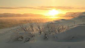 Złoty świt na wybrzeżu Barents morze w zimie zdjęcie wideo