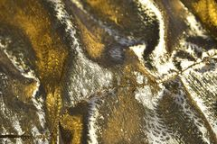 Złoty atlant Zdjęcia Stock