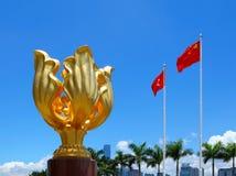 Złoty Bauhinia kwadrat zdjęcie stock