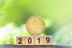 Złoty bitcoin 2019 na greenery natury tle z kopii przestrzenią i drewniany blokowej liczby rok zdjęcie royalty free