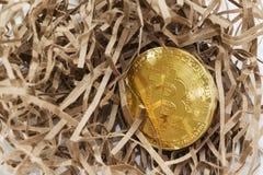 Złoty bitcoin w tle niewygładzony papier pojęcia prowadzenia domu posiadanie klucza złoty sięgający niebo Bitcoin trzask fotografia royalty free