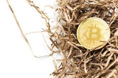 Złoty bitcoin w tle niewygładzony papier pojęcia prowadzenia domu posiadanie klucza złoty sięgający niebo Bitcoin trzask obrazy stock