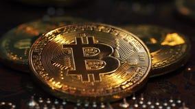 Złoty Bitcoins kłamstwo na komputerowym planie na narzędzia zdjęcie wideo