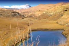 złoty bramy highland np obrazy stock