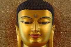 Złoty Buddha wśrodku Mahabodhi świątyni, Bodhgaya, Bihar, India Obraz Royalty Free
