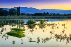 Złoty godzina zmierzch nad spokojem, odbijający jezioro z zielonymi roślinami obraz royalty free