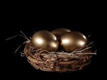 złoty jajka gniazdeczko Obrazy Stock