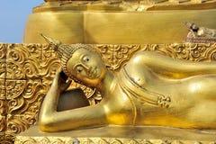 Złoty kłaść buggha zdjęcie stock