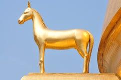 złoty koń Obrazy Stock