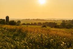 Złoty lato zmierzch nad środkowo-zachodni polem obraz stock