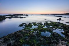 Złoty magiczny zmierzch na skalistej plaży z zielonym mech w Porto Portugalia europejczycy fotografia royalty free