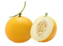 Złoty melon fotografia royalty free
