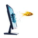 złoty monitor komputera ryb obraz stock