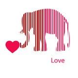 Złoty obramiający słoń w lekkich promieniach Fotografia Royalty Free